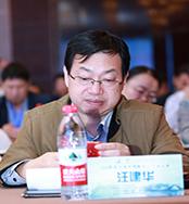 我的钢铁网首席分析师汪建华