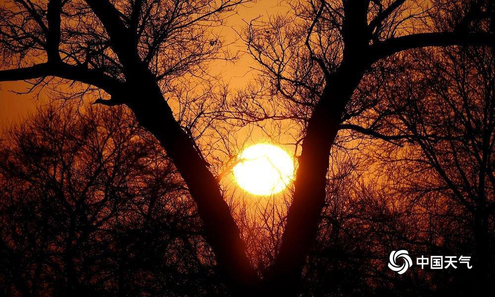 渐渐落下帷幕的夕阳,不时露出红彤彤羞答答的圆润脸庞,在片片风景林和