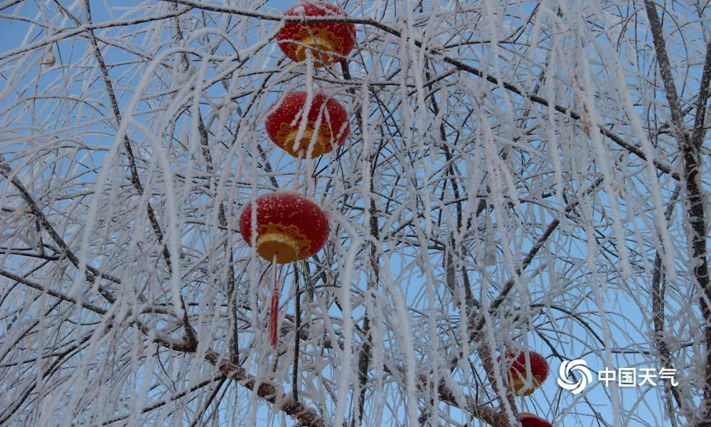 1月31日朝晨,甘肃高台县城最低气温降至-20.2℃,受此影响,高台县黑河湿地新区出现雾凇景观。河面上云蒸霞蔚,河干玉树琼花,置身其间,宛如走进不染纤尘的童话天下。(图高博 文杨丽�)