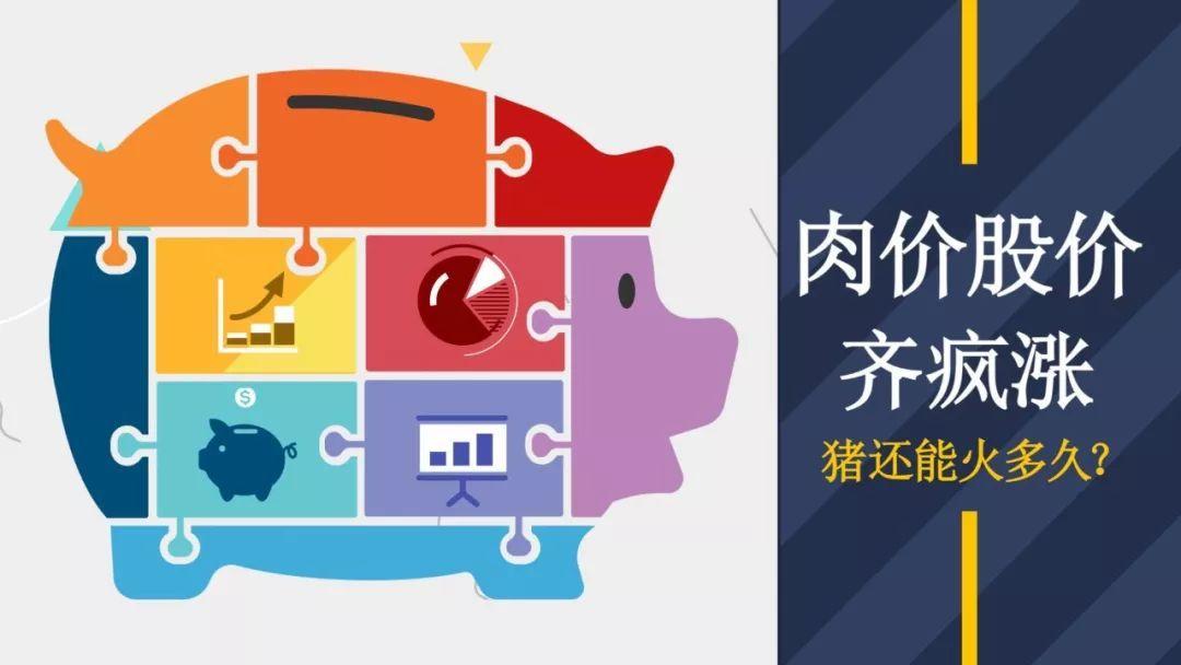 财经观察家 郑风田:猪价起飞何时落地?