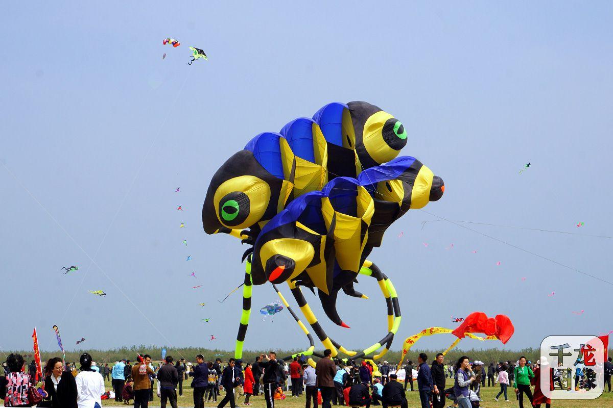潍坊国际风筝节时间_第36届潍坊国际风筝会4月20日开幕-新闻频道-和讯网