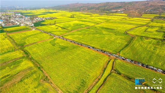 """河南省襄城:""""油菜花经济""""带动乡村旅游"""