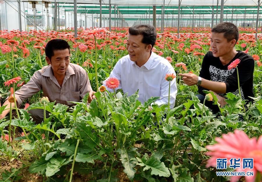 廖俊波(中)在福建省政和县铁山镇东涧村向花农了解花卉生产情况(2014年4月18日摄)。 新华社发(徐庭盛)
