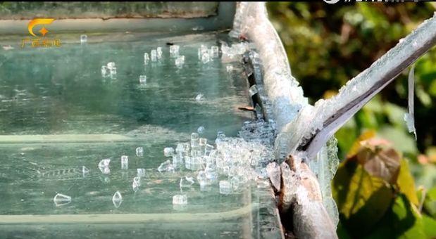 景区玻璃滑道护栏被撞破致1死6伤,游客述惊魂瞬间