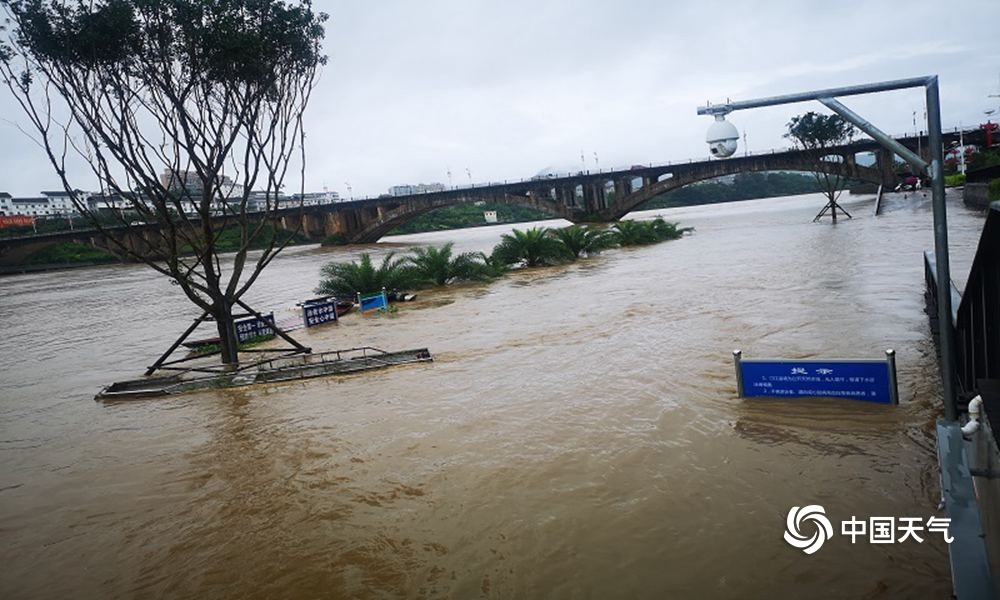 福建龙岩:暴雨致河水猛涨 绿道受淹