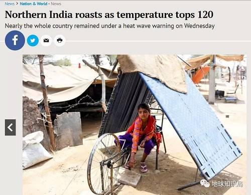 6月4日,拉贾斯坦邦小女孩在49度高温下搭起了床板遮荫工作