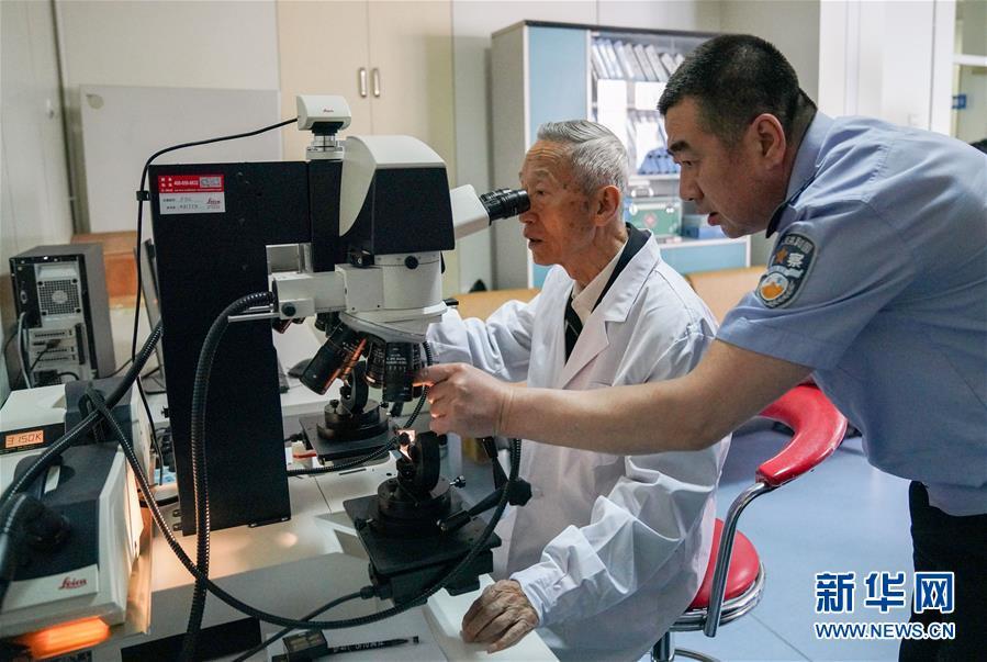 在黑龍江省公安廳刑事技術總隊實驗室中,崔道植(左)和三兒子崔英濱在進行痕跡檢驗工作(6月11日攝)。新華社記者王松攝
