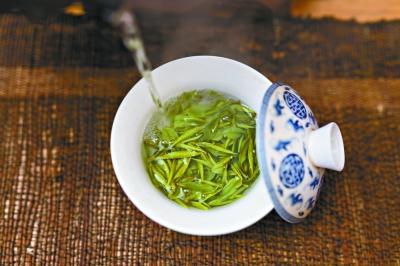 用绿茶精确给药 定时定量释放药物