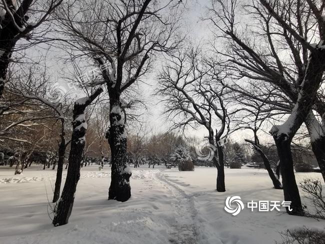 強降雪致黑龍江交通嚴重受阻 今