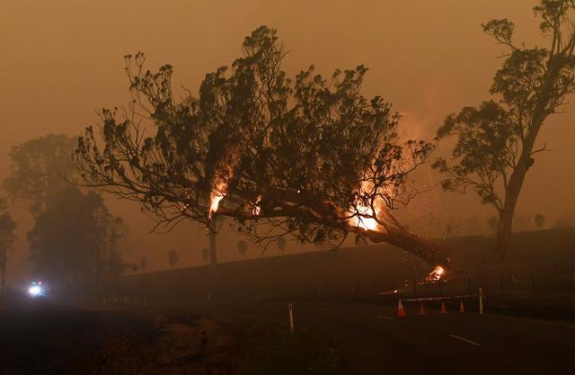 原油原油期货开户山火肆虐!澳大利亚经济遭受沉重一击,央行更多降息已在路上?