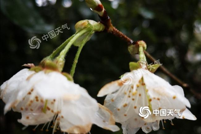 http://www.cyxjsd.icu/hunanxinwen/108939.html