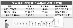 """大数据产业扮靓贵阳新名片 """"中国数谷""""呼之欲出"""
