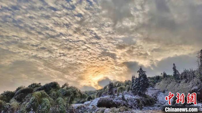 四川古蔺:寒潮下的绝美山区雪景