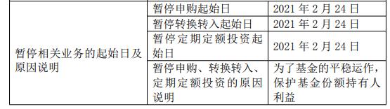 """网红基金经理张坤""""辣手""""控规模:全面暂停申购 史上最大分红"""