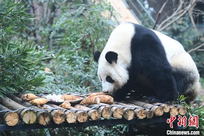 http://www.edaojz.cn/tiyujiankang/881370.html