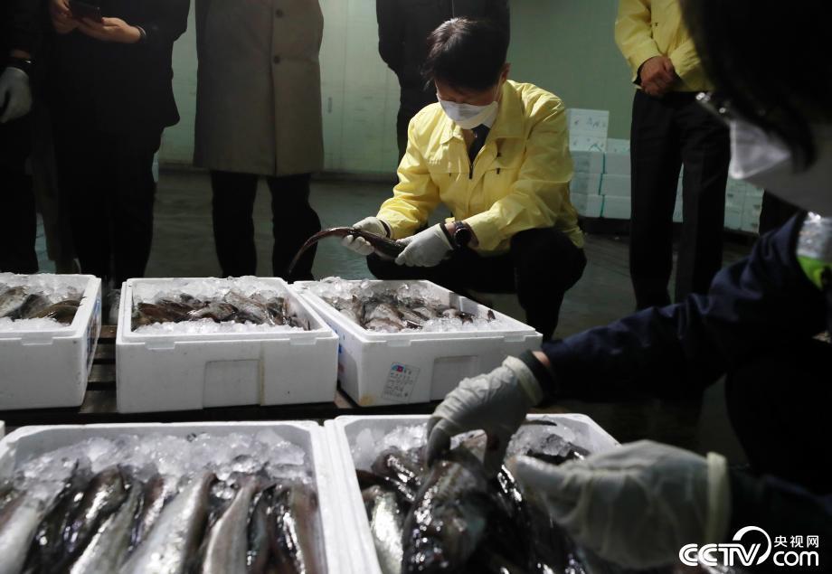 韩国鱼市对日本进口鱼类进行核辐射检测