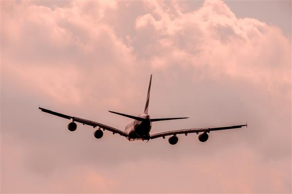 东航飞机起飞后遇鸟击紧急返航:前挡风出现裂纹