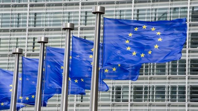 欧盟暂停对美钢铝关税反制措施,双边贸易关系出现积极信号?