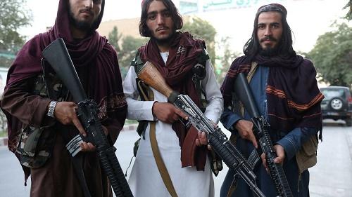 法媒:塔利班拿到美国所建阿富汗人信息数据库 美媒渲染有人或遭清算