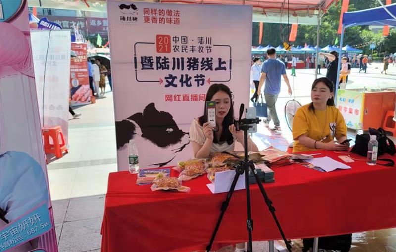 广西·陆川农民丰收节暨陆川猪线上文化节盛大开幕