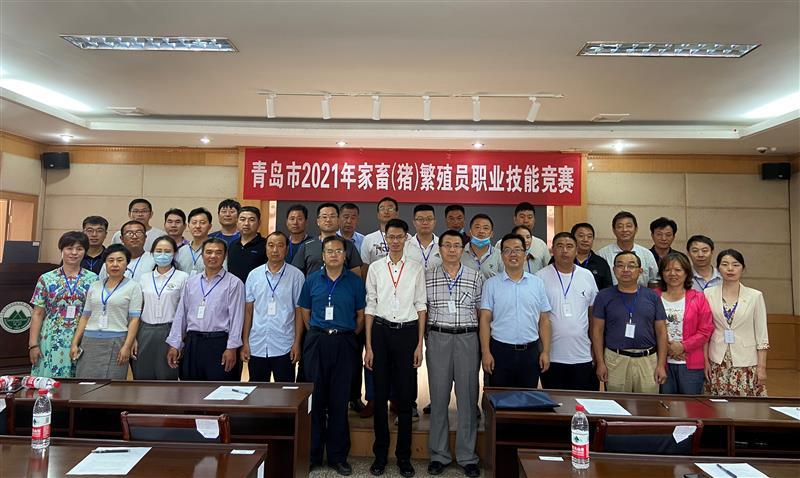 青岛举办2021年家畜(猪)繁殖员职业技能竞赛