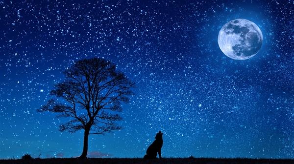 睡得不好也许是月亮造成的!最新研究指出月球周期可能会影响睡眠质量